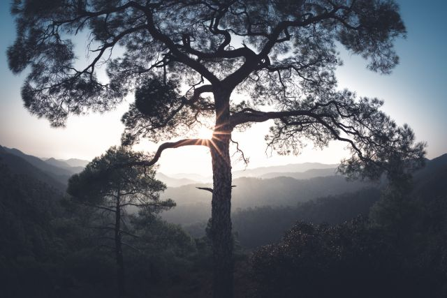 Troodos Mountains Activities