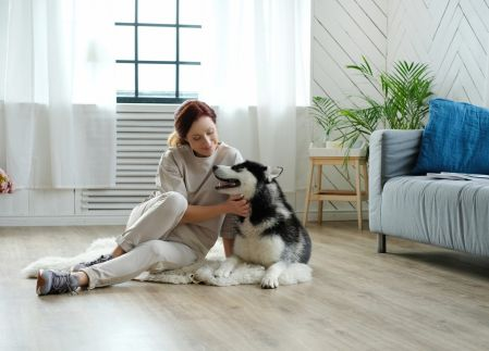 Chipre bienes raíces: los pros y los contras de los inquilinos con mascotas